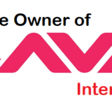 lava International Company logo - who is the owner of